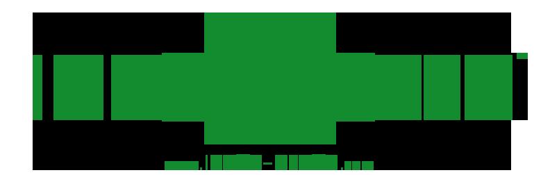intox detox logo